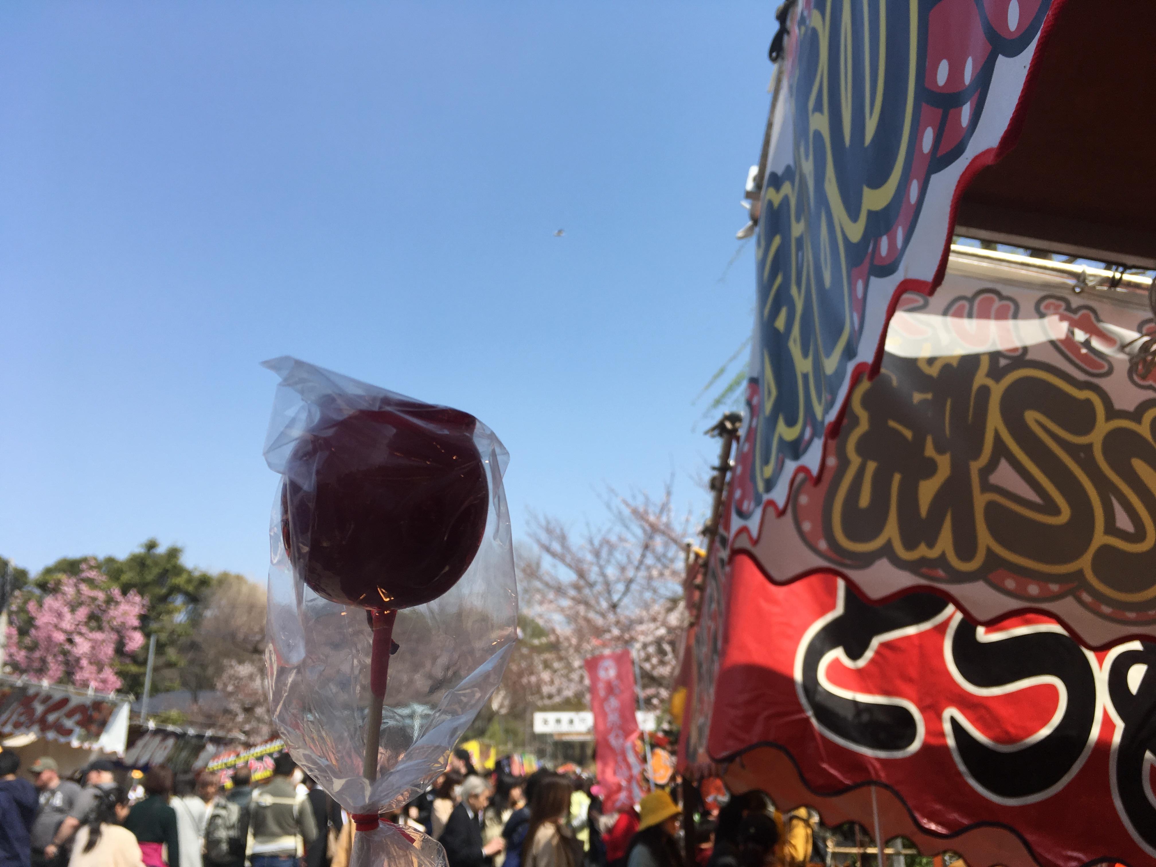 \春うらら上野!屋台と夜桜の注意点/_1_1