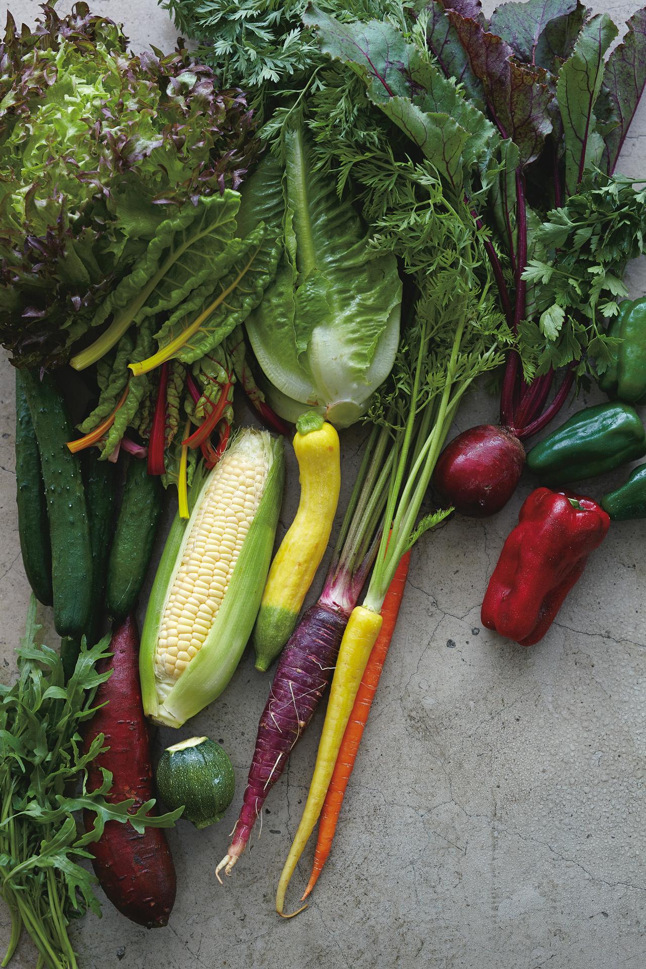 センスあふれる西洋野菜を育てる「アグリアート農園」_1_1