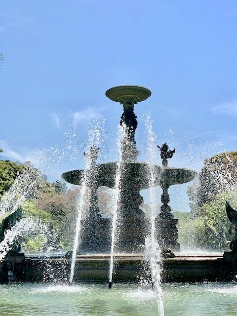 東京のベルサイユ宮殿⁉️_1_3