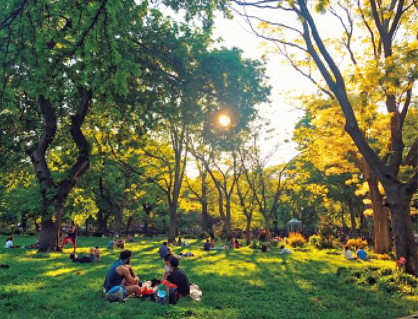 公園の再開でピクニックは大人気となっている
