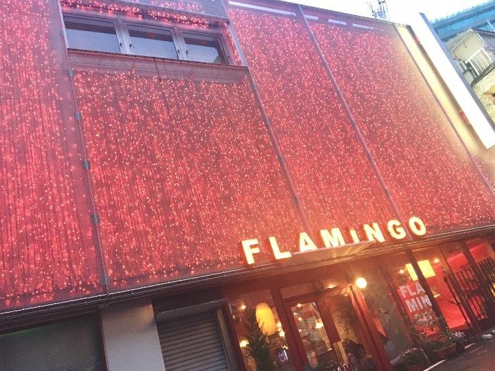 あのアイドルの ジャケット写真 や MV でも使われた cafe flamingo ˚✧₊⁎_1_1