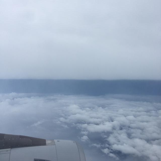 新型コロナ禍における空の移動✈︎_1_3