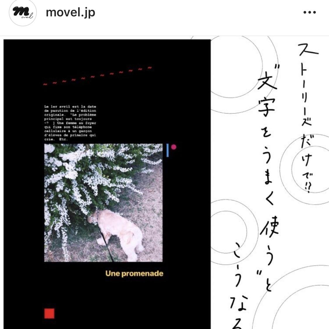 【誰でも簡単】Instagramのストーリーを可愛くする方法!_1_3-3