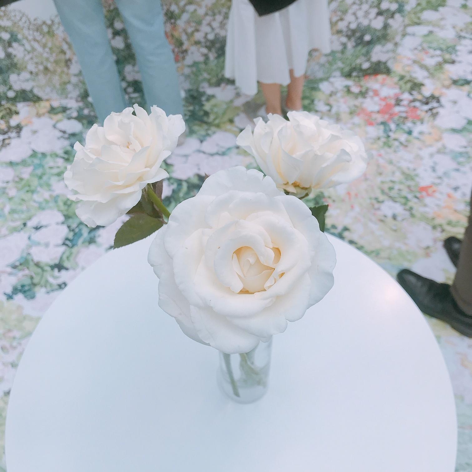 ラデュレの新作の美容成分は薔薇