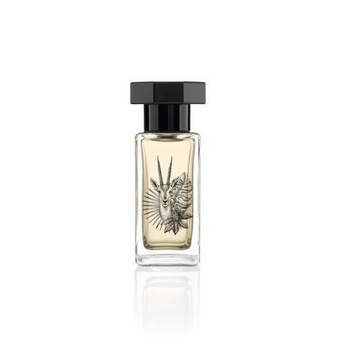 毎日に贅沢な香りを!クヴォン・デ・ミニム「シンギュラー オーデパルファム」_1_6