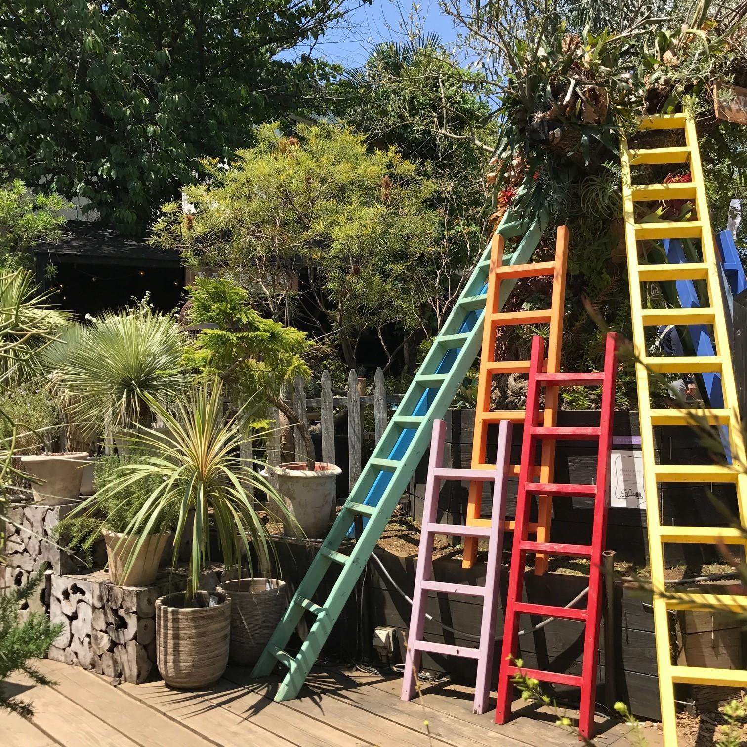 植物のテーマパーク「SOLSO FARM(ソルソファーム)」で過ごす週末_1_2-2