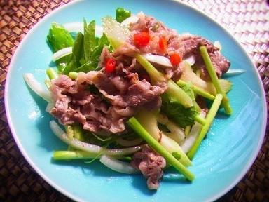 野菜たっぷりで脂肪も燃焼!タイ風スパイシービーフサラダレシピ_1_1