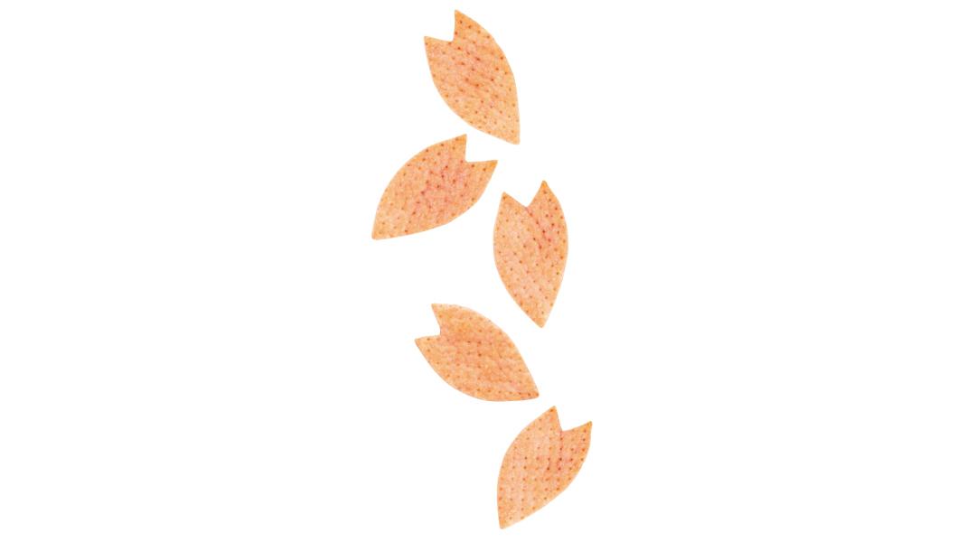 春限定の桜スイーツ♡ 優しいピンクにきゅん!【新川優愛のスイーツ連載】_1_2