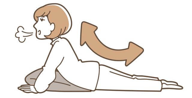 肘を伸ばし、おへそを床につけた状態で痛気持ちいいところまで反らせる