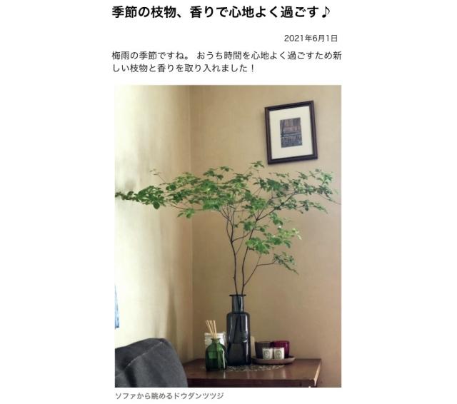 「季節の枝物、香りで心地よく過ごす」(chokoさん)