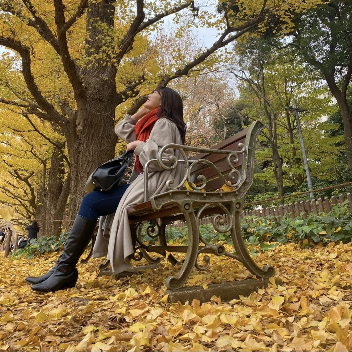 【外苑前】銀杏並木を見てきました!_1_5