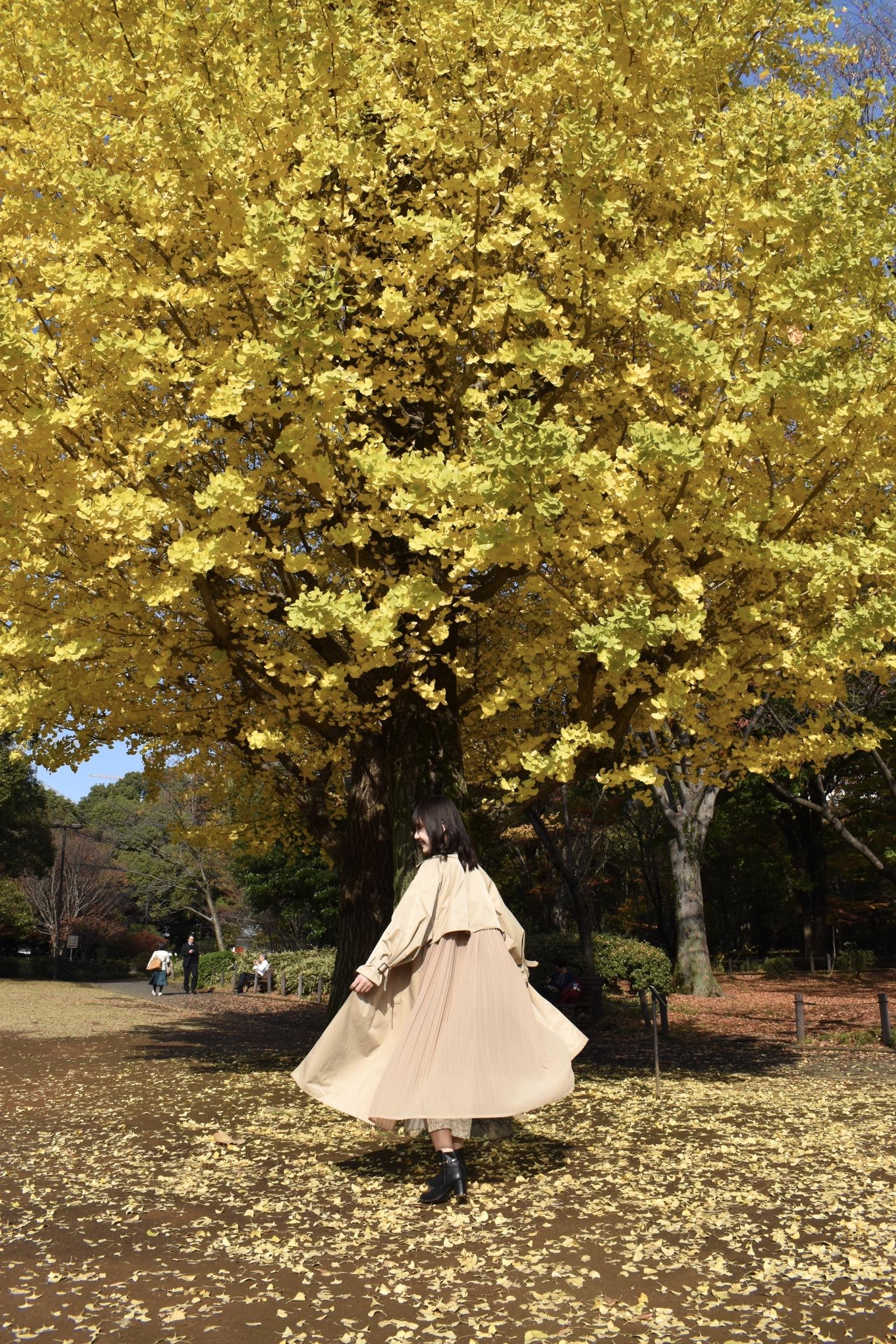【紅葉】北の丸公園でお友達と撮影会!!_1_3