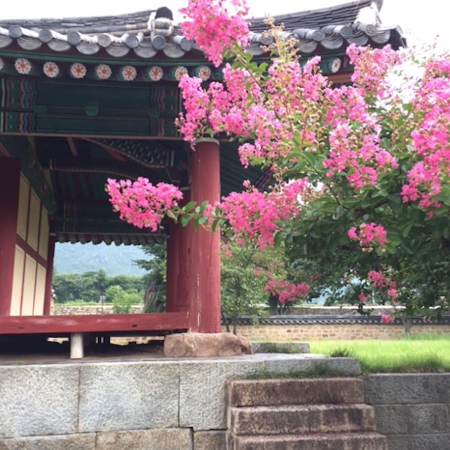 【Web限定】韓国・千年の美食を巡る 全羅道の旅②_1_4-1