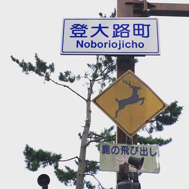 ちょっと気になる道路標識。_1_1-5
