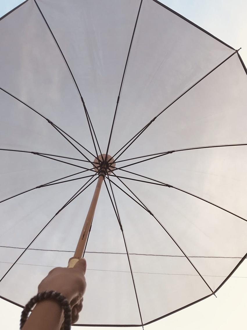 Traditional Weatherwear (トラディショナル ウェザーウェア)のCLEAR UMBRELLA BAMBOOを開いた写真