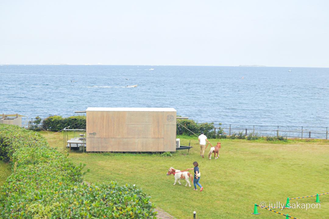 【さかぽんの冒険】空と海に癒される横須賀きっぷ❤️@横須賀美術館_1_13