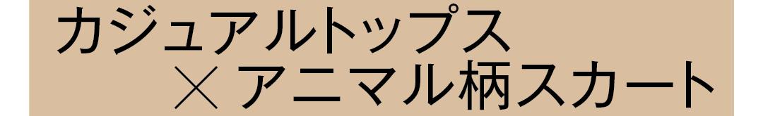 カジュアルトップス×アニマルスカート
