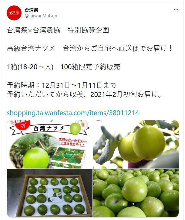 台湾ナツメ 棗 台湾祭
