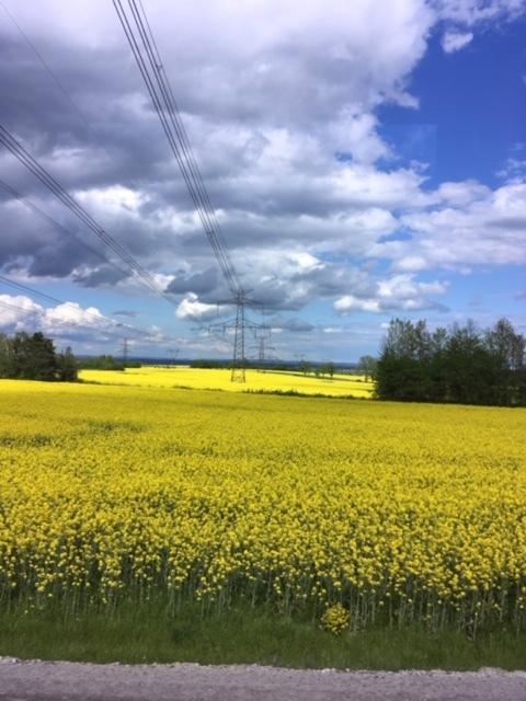 中欧ヨーロッパ周遊の旅(ダイジェスト)_1_2-2