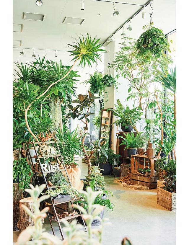 注目の立川エリアにオープン。大人のための園芸店RUST