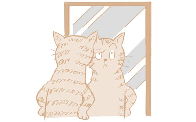 鏡の前で目や眉を動かす