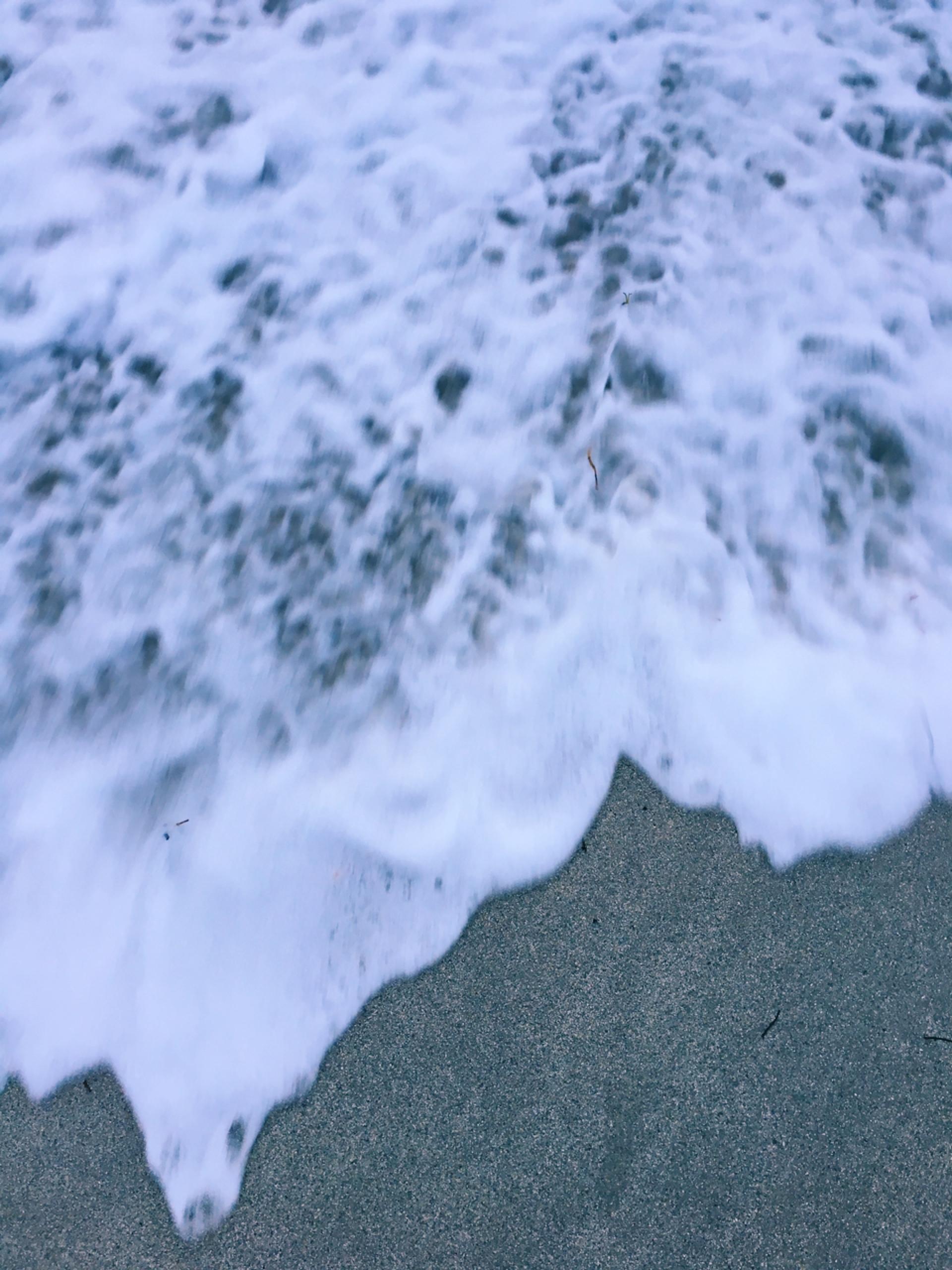 マイアミビーチにて。_1_15
