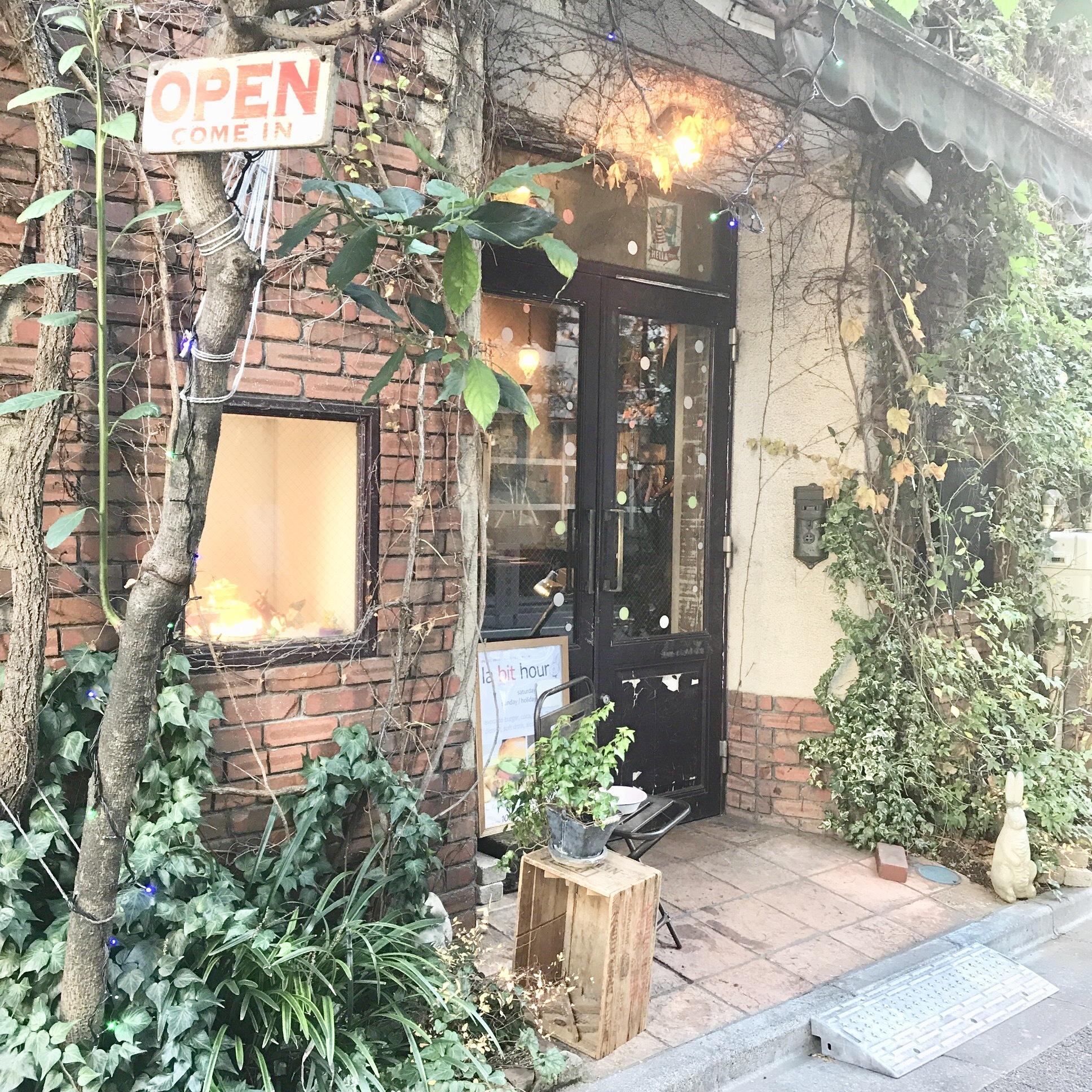 【渋谷】アボカド料理のお店《ウサギ》♡_1_1