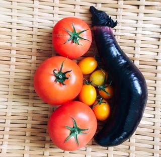 50代の元気:子どもたちも大好き!手作り野菜で夏のサラダランチ_1_1