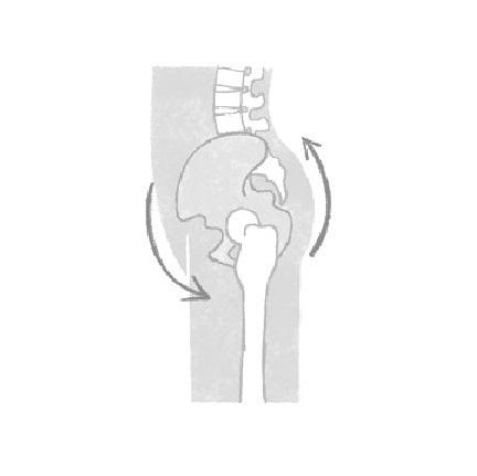 あなたの姿勢大丈夫?カギは骨盤にあり 老けない姿勢のつくり方②【From MyAge/OurAge】_1_7