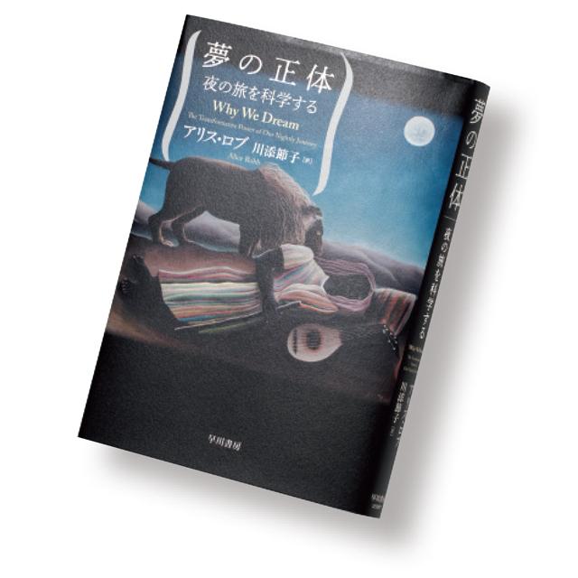 『夢の正体』 アリス・ロブ 川添節子/訳