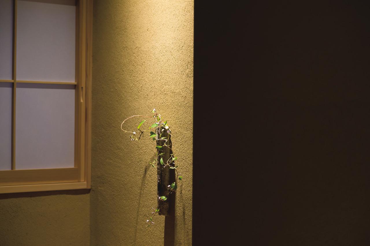 京都、NY、ロンドンで培った技と感性を奈良で開花 白 Tsukumo_1_4-1