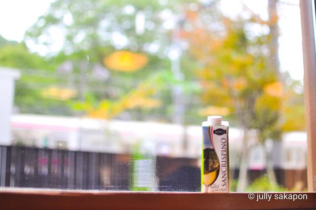 【さかぽんの冒険】苔むす秋の山と温泉プチトリップ❤️@高尾山_1_16