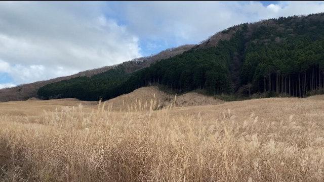10月にOPENした「ライムリゾート箱根」で大自然と創造力で豊かな旅_1_4