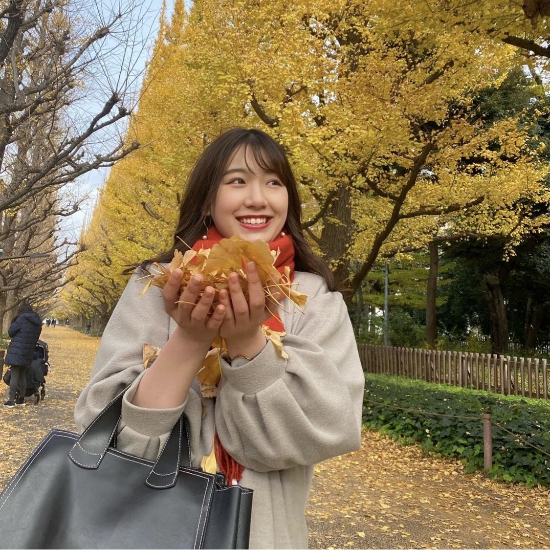 【外苑前】銀杏並木を見てきました!_1_3