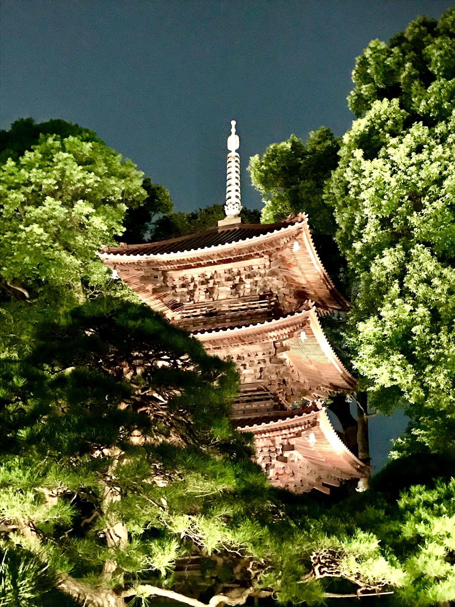 ホテル椿山荘東京「東京雲海」