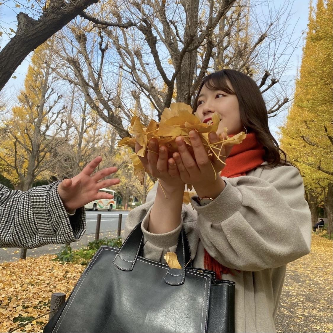 【外苑前】銀杏並木を見てきました!_1_6