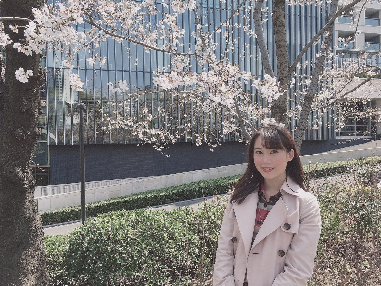 4/14まで♡東京ミッドタウンでお花見_1_1-3