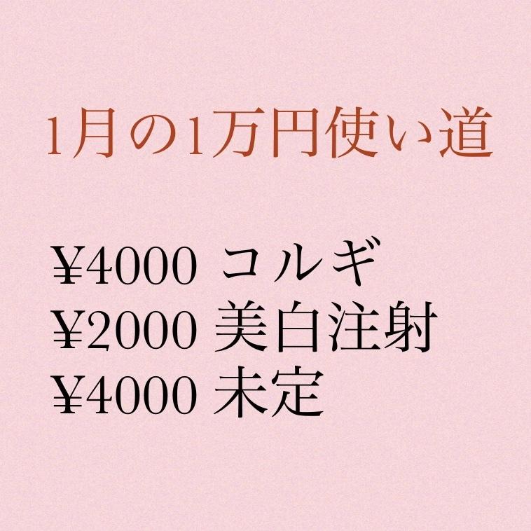 【2020年】今年の目標 〜美容編〜_1_4