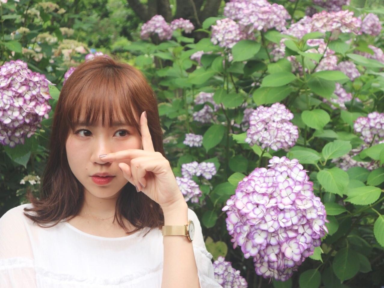 オススメ紫陽花スポット ⸌◦̈⃝⸍❁⃘_1_5