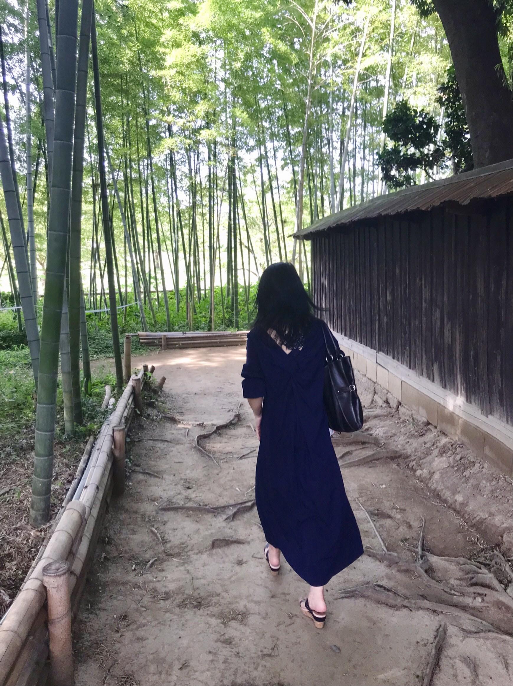 敷地内の竹林/中の家