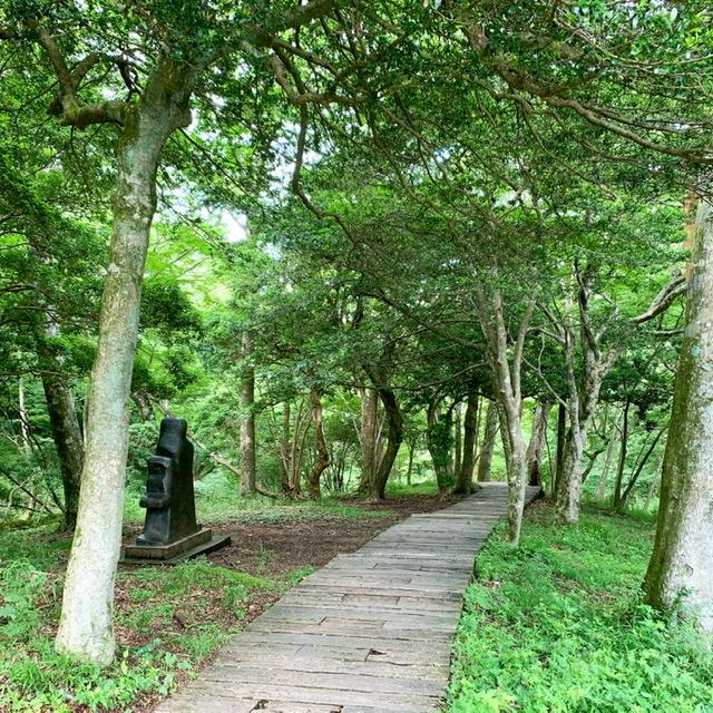 新緑の箱根、ポーラ美術館。洗練された空間に癒しのひととき。_1_7