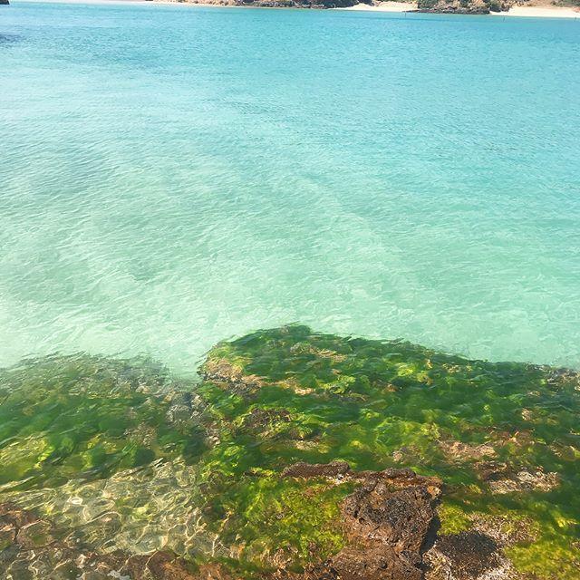 海の透明度が、驚くほど高い!夏の旅行先は壱岐にしませんか?_1_3