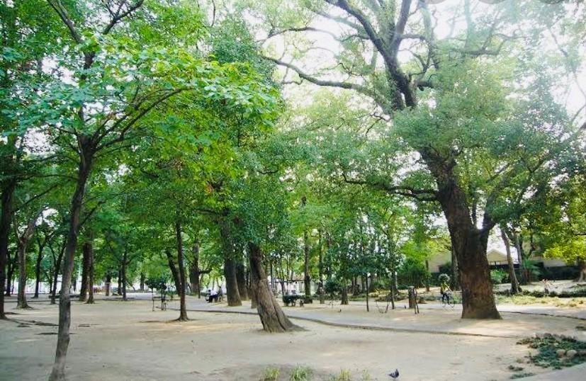 新緑あふれる街「和モダン着物」撮影✨_1_3