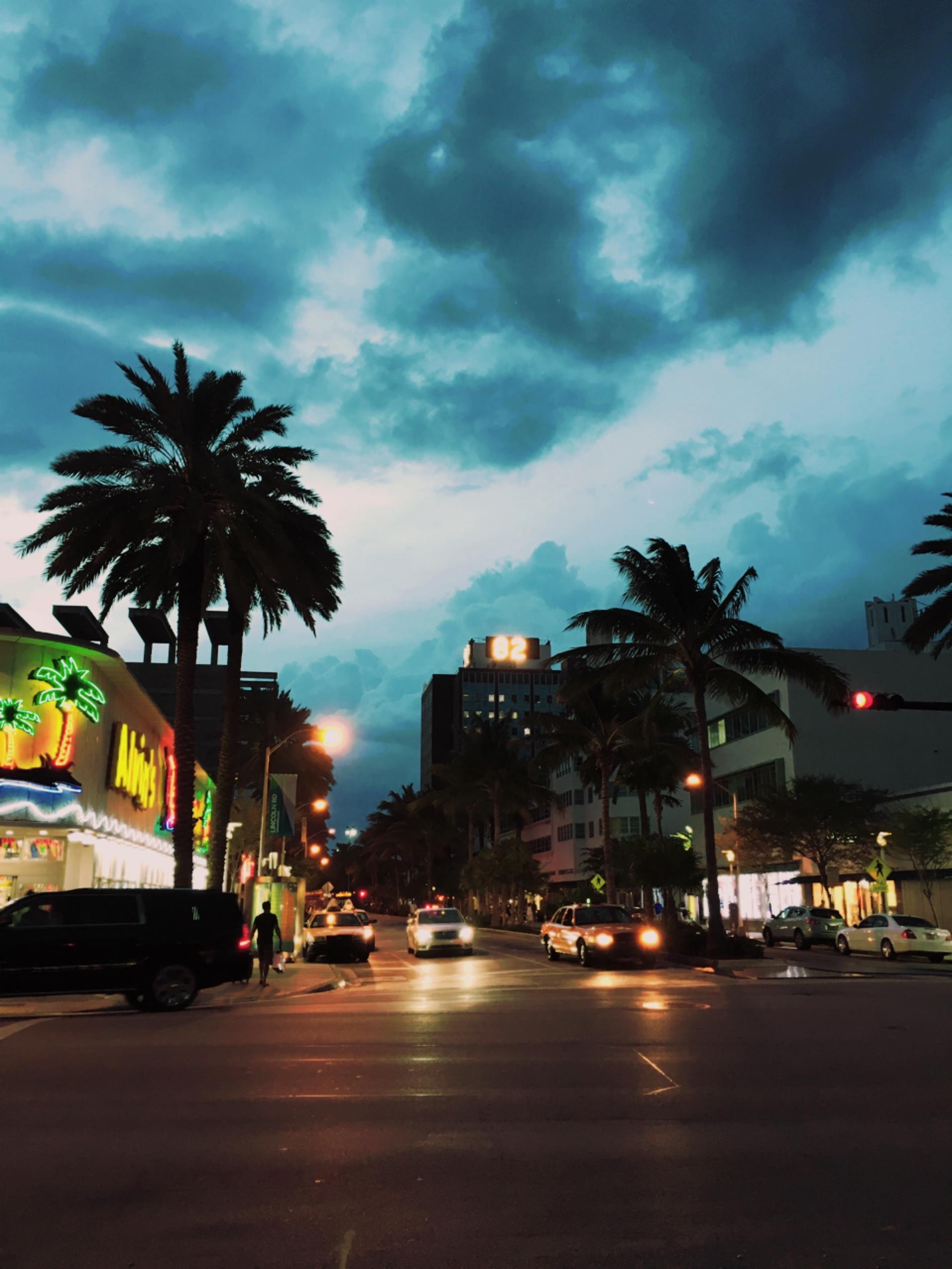 マイアミビーチって、こんなところ。_1_1