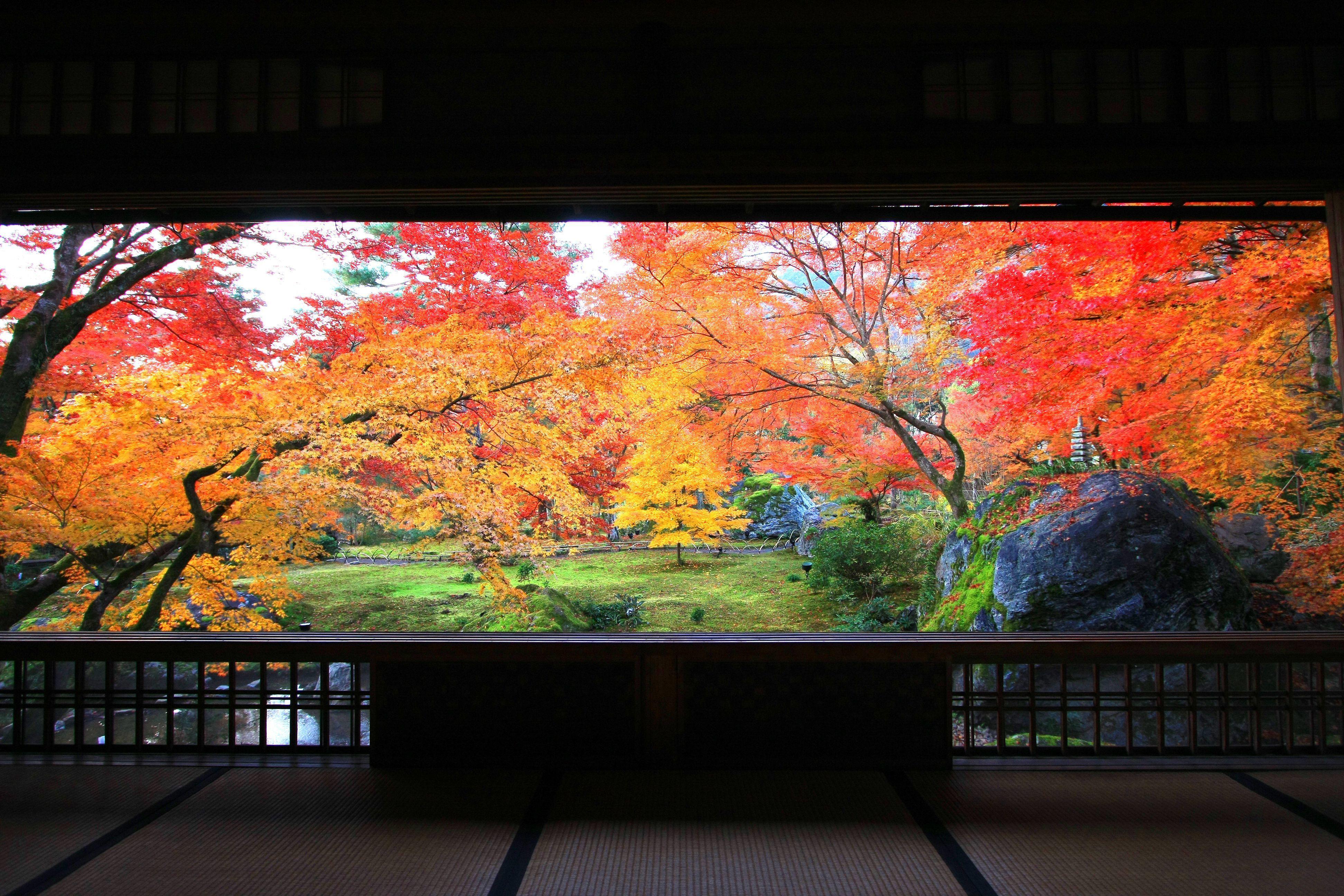 50代のための紅葉スポット!①日本の心を感じる、神社仏閣の美_1_1