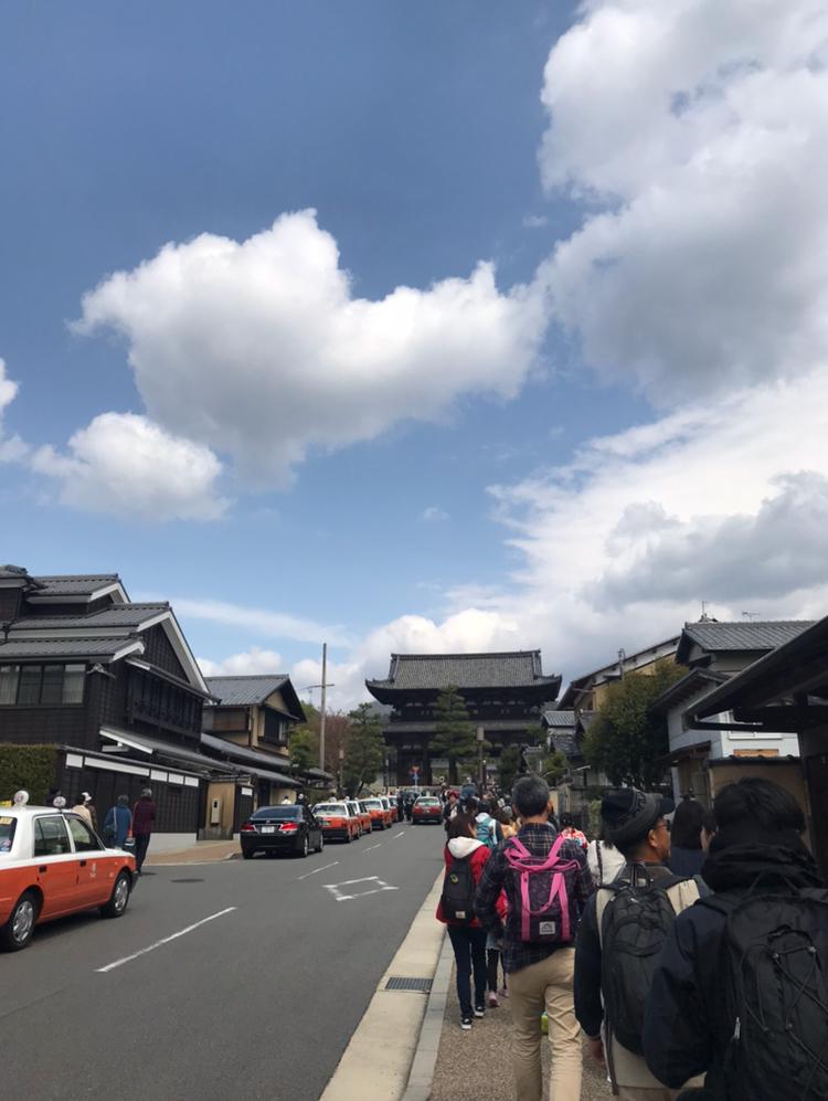 京都 仁和寺。低気温な日のお花見はパーカーが大活躍!_1_3-6