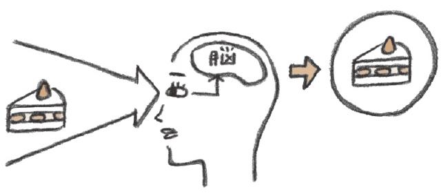 脳を鍛えて見る力アップする