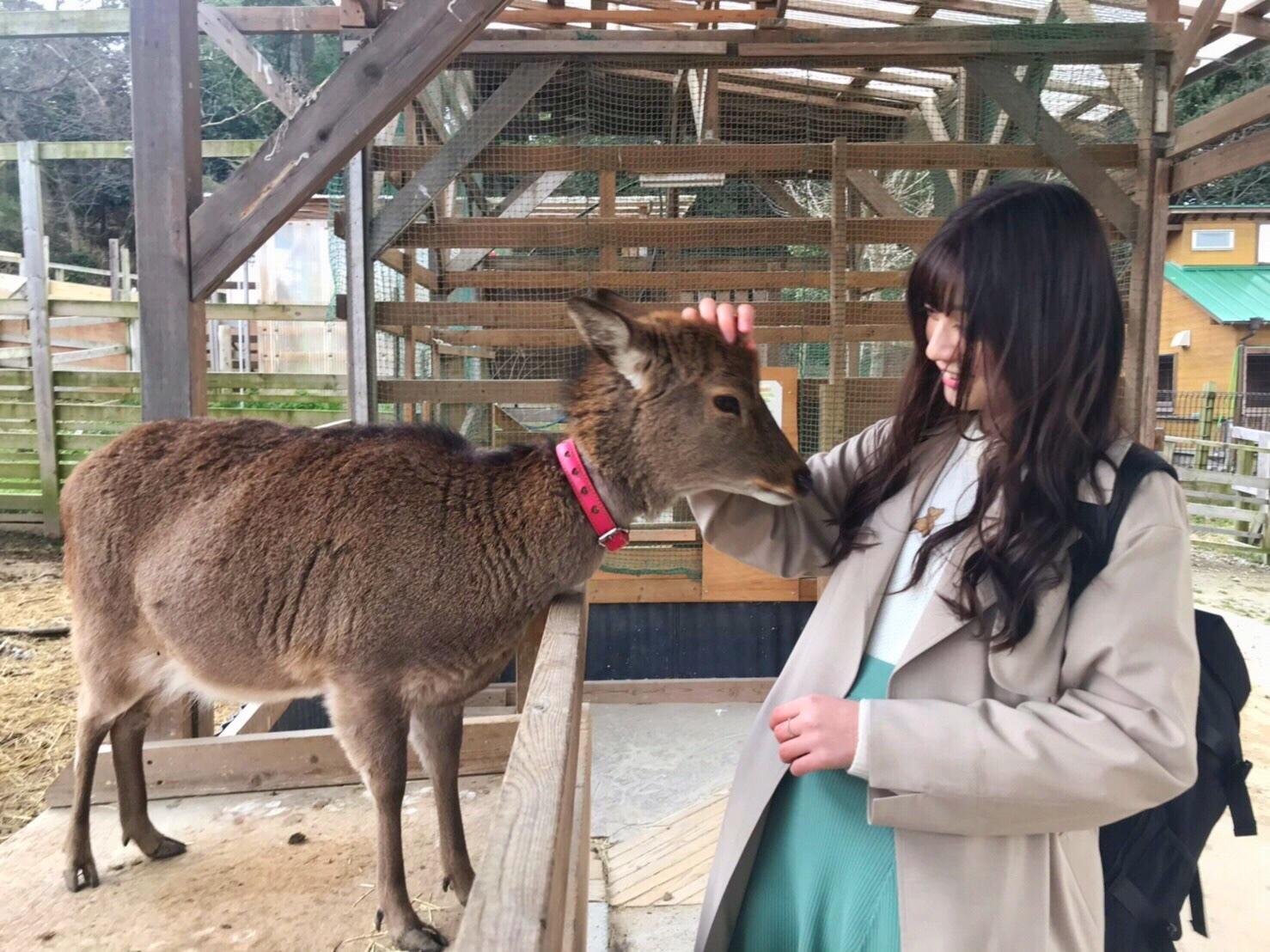 菜の花畑がインスタ映え!!女子5人で名古屋旅行❤︎_1_5