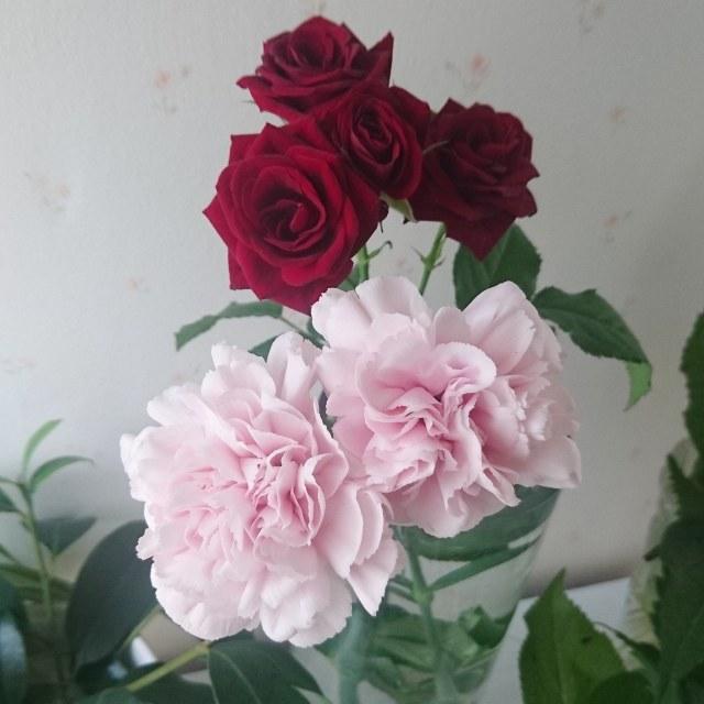 私のお花LIFE_1_4