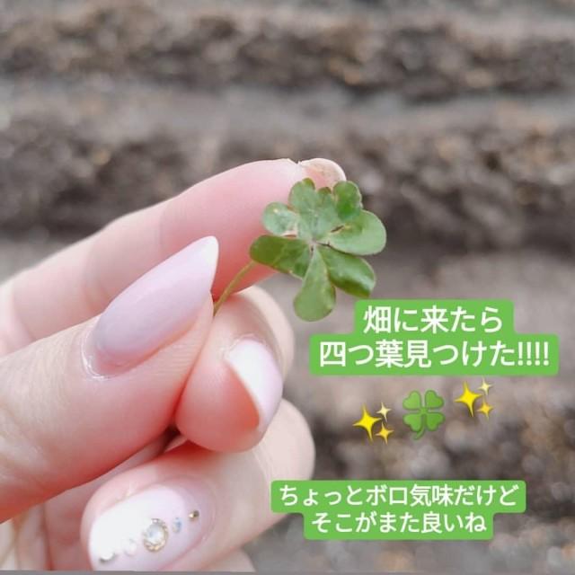 〈ネイル〉四つ葉モチーフで新緑のGW待ち_1_2